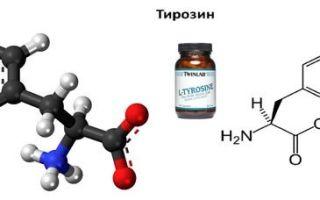 L-тирозин — для чего он нужен, инструкция по применению, продукты богатые аминокислотой