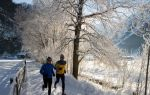Бег по утрам: польза и вред утренней пробежки, как заставить себя бегать по утрам