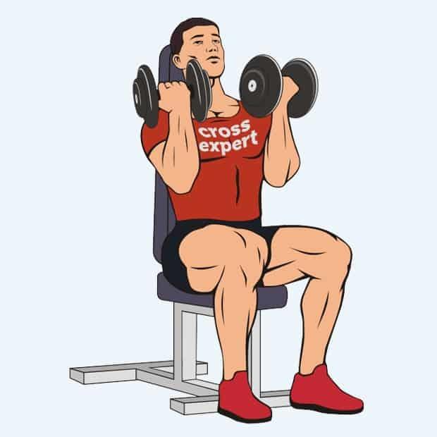 Жим Арнольда: техника выполнения сидя с гантелями, какие мышцы работают