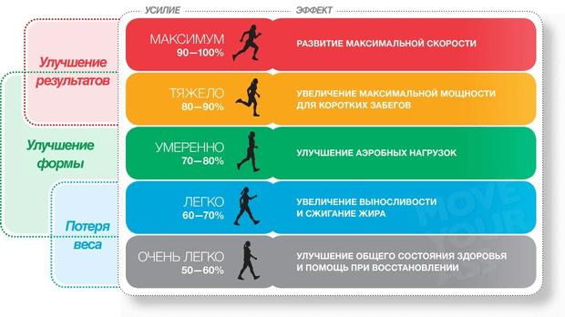 Пульс при беге: какой должна быть, норма ЧСС, зоны и бег на низком пульсе