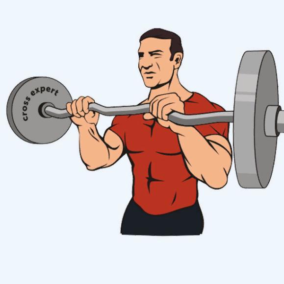 Подъёмы штанги на бицепс стоя или сидя: какие варианты лучше для тренировок