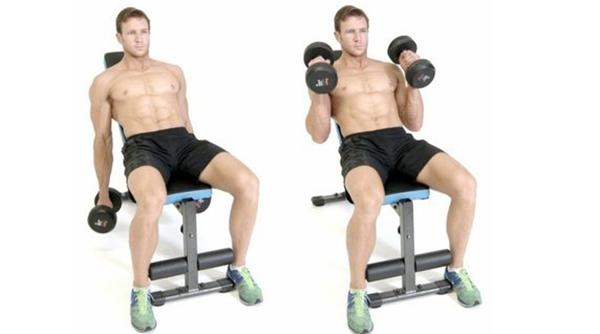 Молот — упражнение на бицепс для настоящих мужчин!