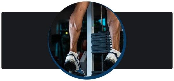 Икроножная мышца: упражнения на икры ног для мужчин и девушек
