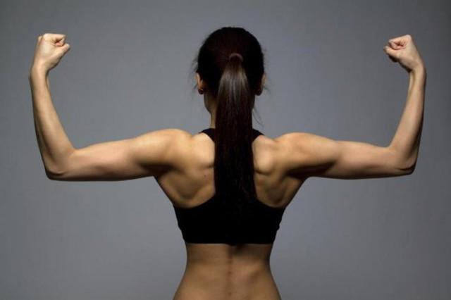 Большая и малая круглые мышцы спины: анатомия, строение и лучшие упражнения