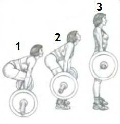 Становая тяга: как правильно делать упражнение, какие мышцы задействованы, техника классической тяги