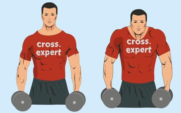 Трапециевидная мышца спины: функции, анатомия, как накачать трапецию