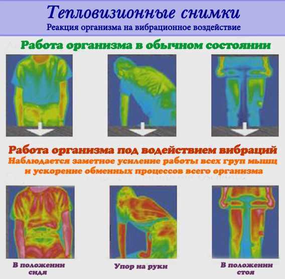 Виброплатформа: польза для похудения и противопоказания вибротренажера
