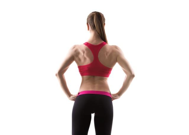 Лучшие тренажеры для спины в тренажерном зале: виды и техника упражнений