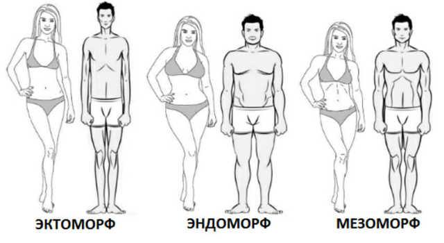 Гейнер для набора мышечной массы: какие бывают виды и как правильно принимать