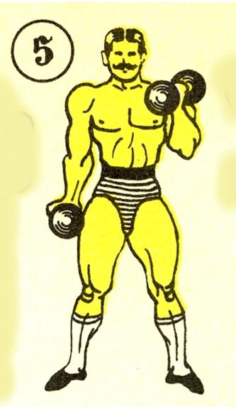Георг Гаккеншмидт: упражнения, антропометрия, победы