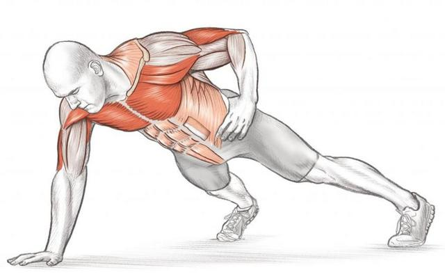 Отжимания на одной руке: как научиться отжиматься на 1 руке, польза упражнения