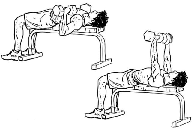 Жим гантелей лежа – преимущества техника, варианты с прямым и нейтральным хватом