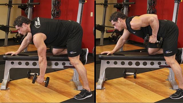 Упражнения на спину с гантелями: как накачать спину гантелями