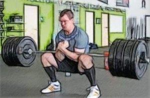 Приседания Зерхера – анатомия и техника упражнения.