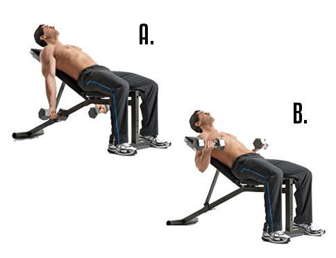 Как накачать трицепс гантелями: варианты упражнений