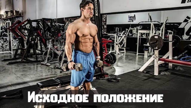 Подъем гантелей перед собой стоя для массивных плеч