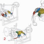 Как накачать низ грудных мышц: упражнения на низ груди в домашних условиях и зале