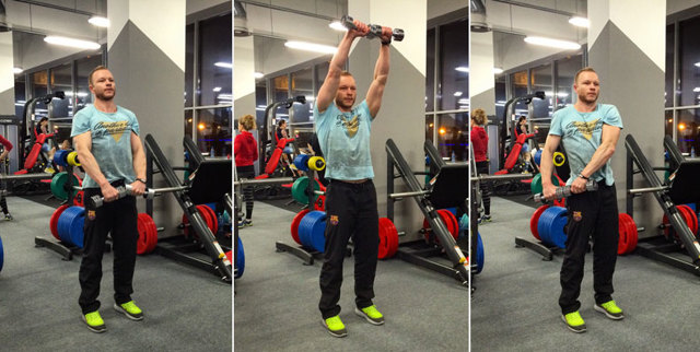 Прямая мышца живота – особенности строения, функции и лучшие упражнения для девушек и мужчин
