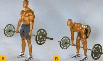 Базовые упражнения на ноги: как тренировать ноги мужчине на массу